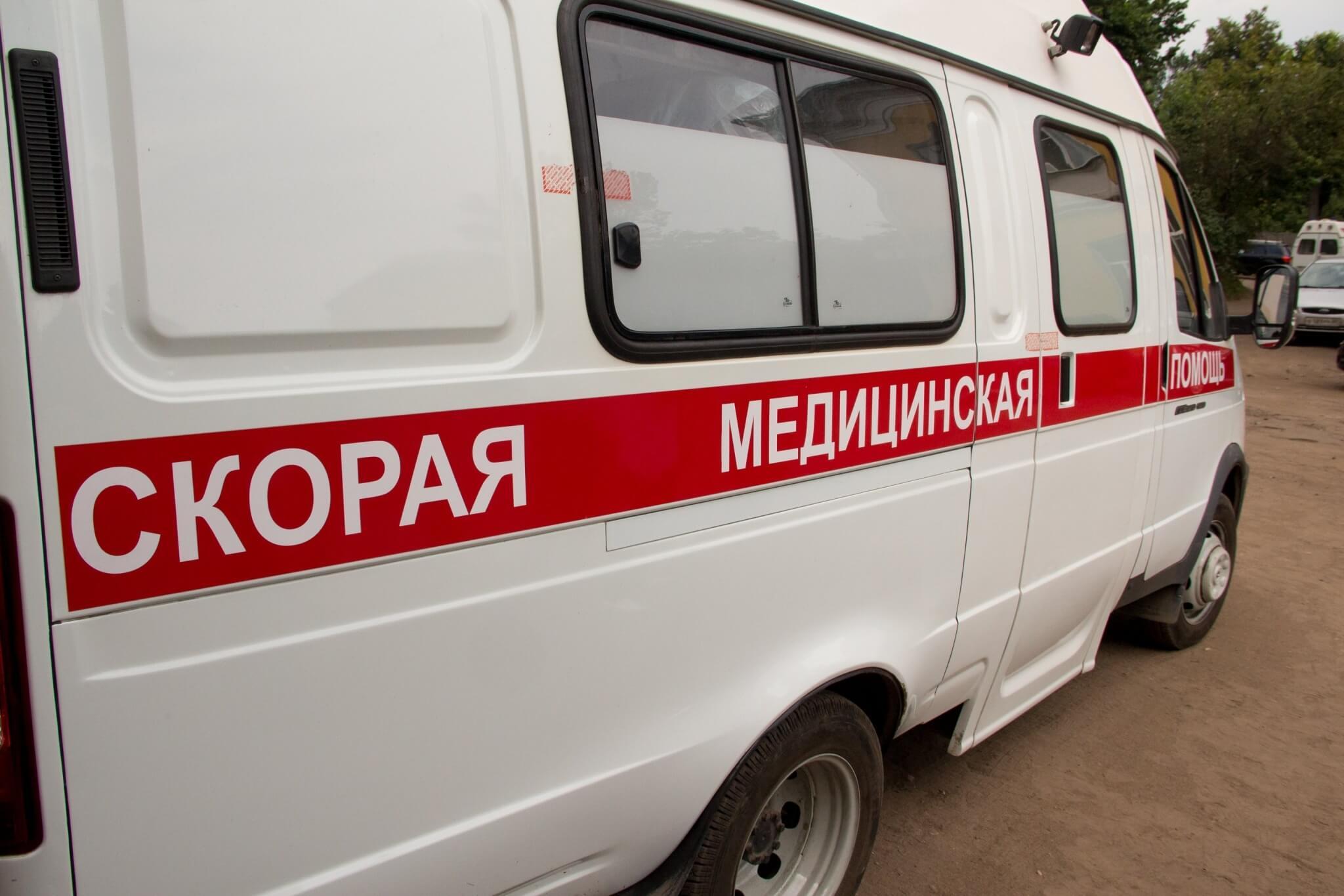 Фото: prov-telegraf.ru