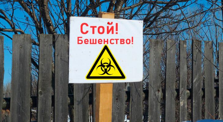 Фото: nashemisto.dp.ua