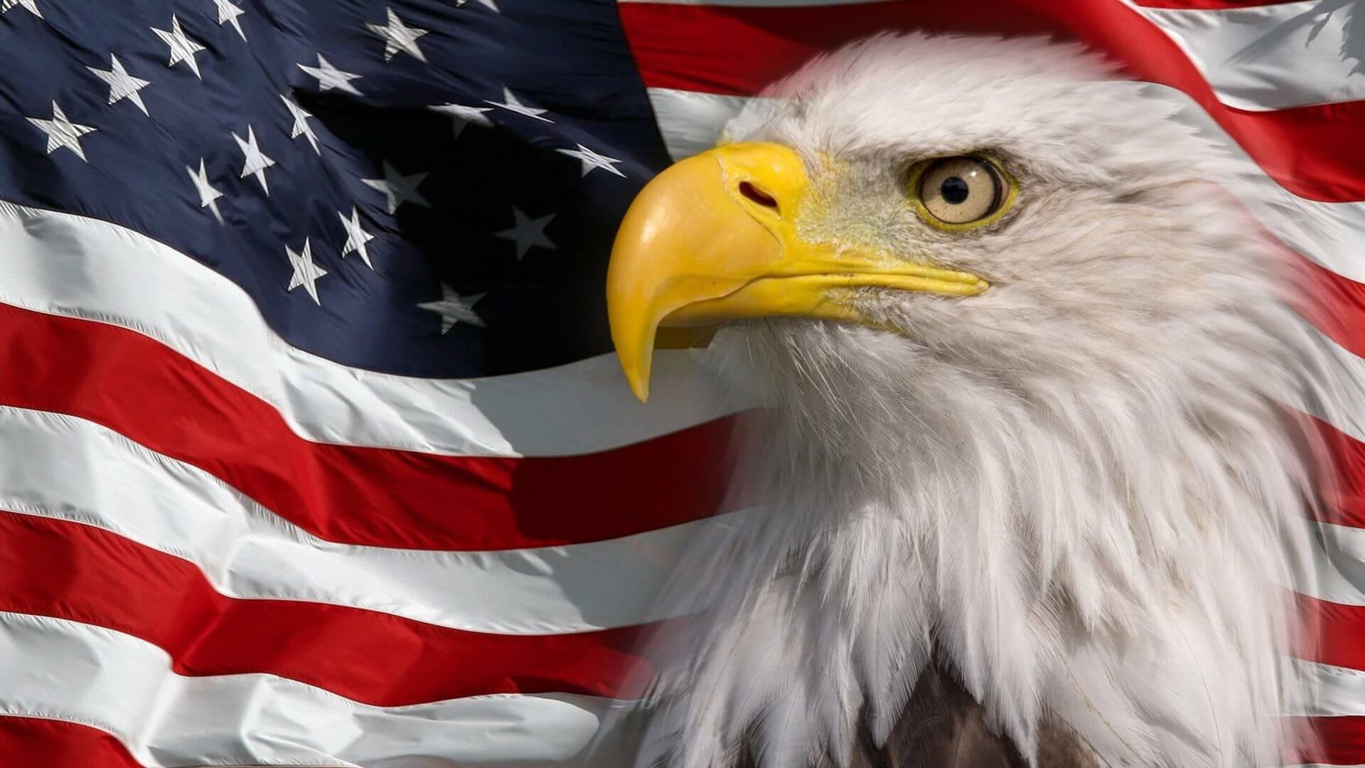 Американский орел