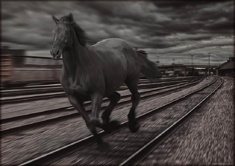 Лошадь на железной дороге