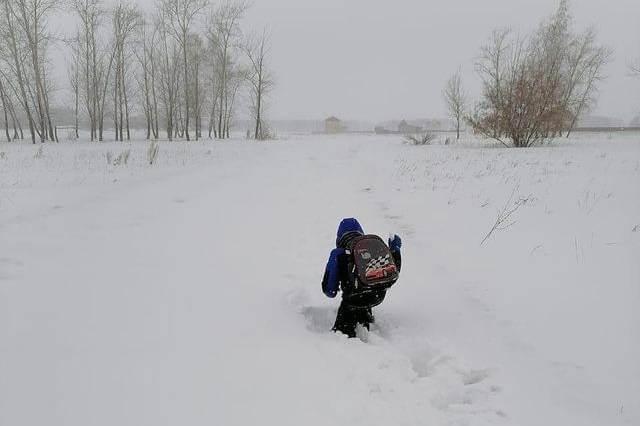 В Омской области первоклассник вынужден ползти в школу по сугробам