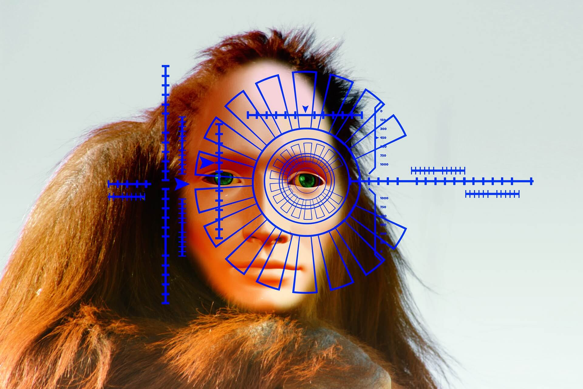 биометрия