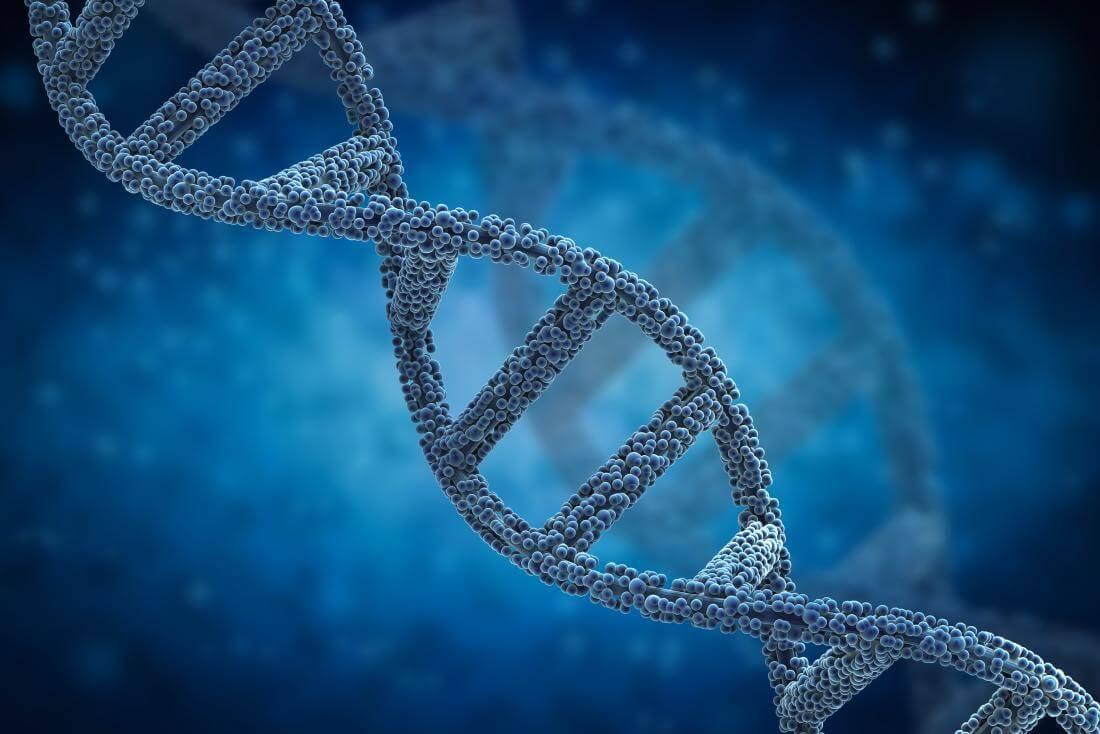 РНК-ДНК