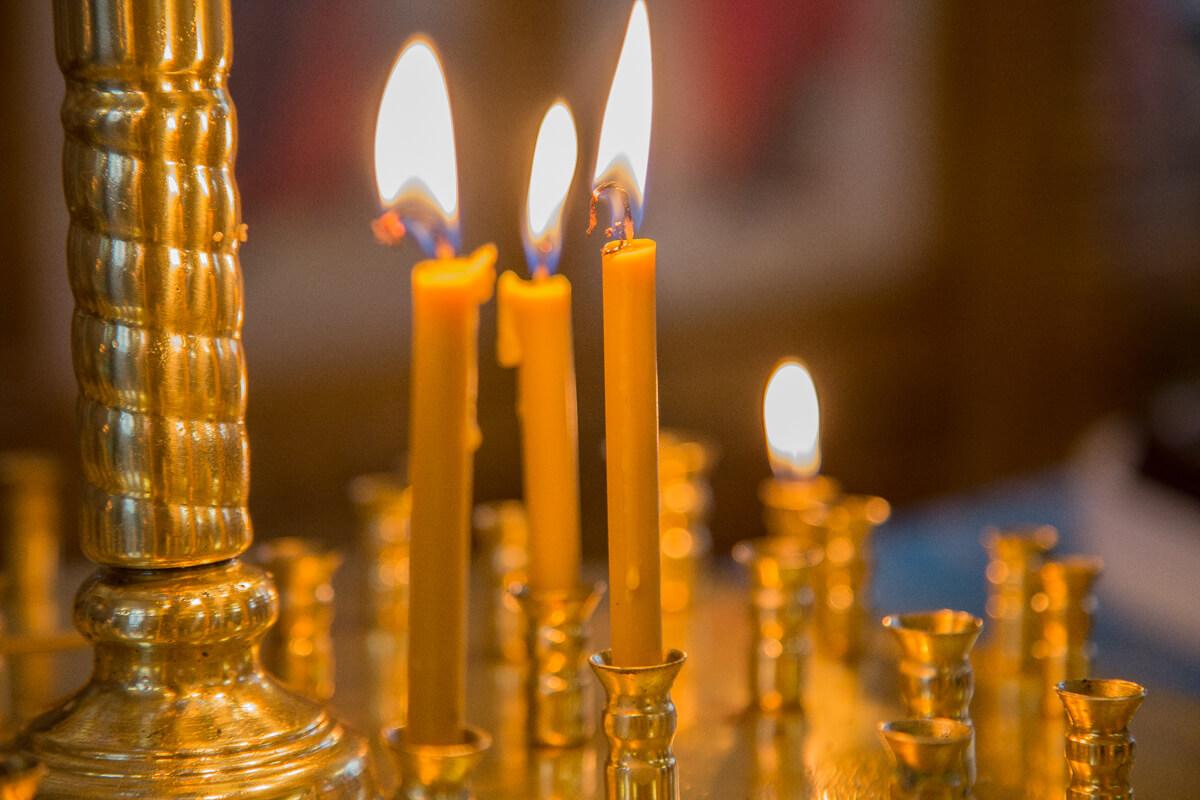 Фото: efcate.com