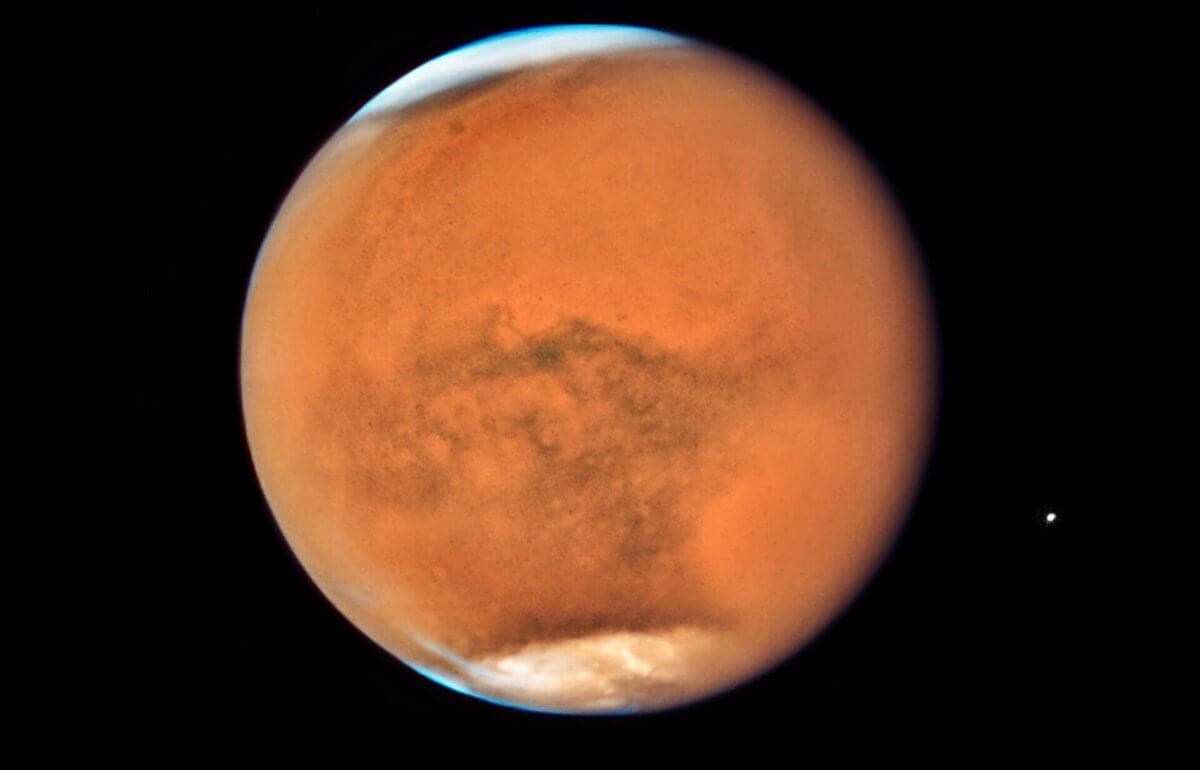 Рогозин ответил на предложение Маска устроить бомбардировку Марса