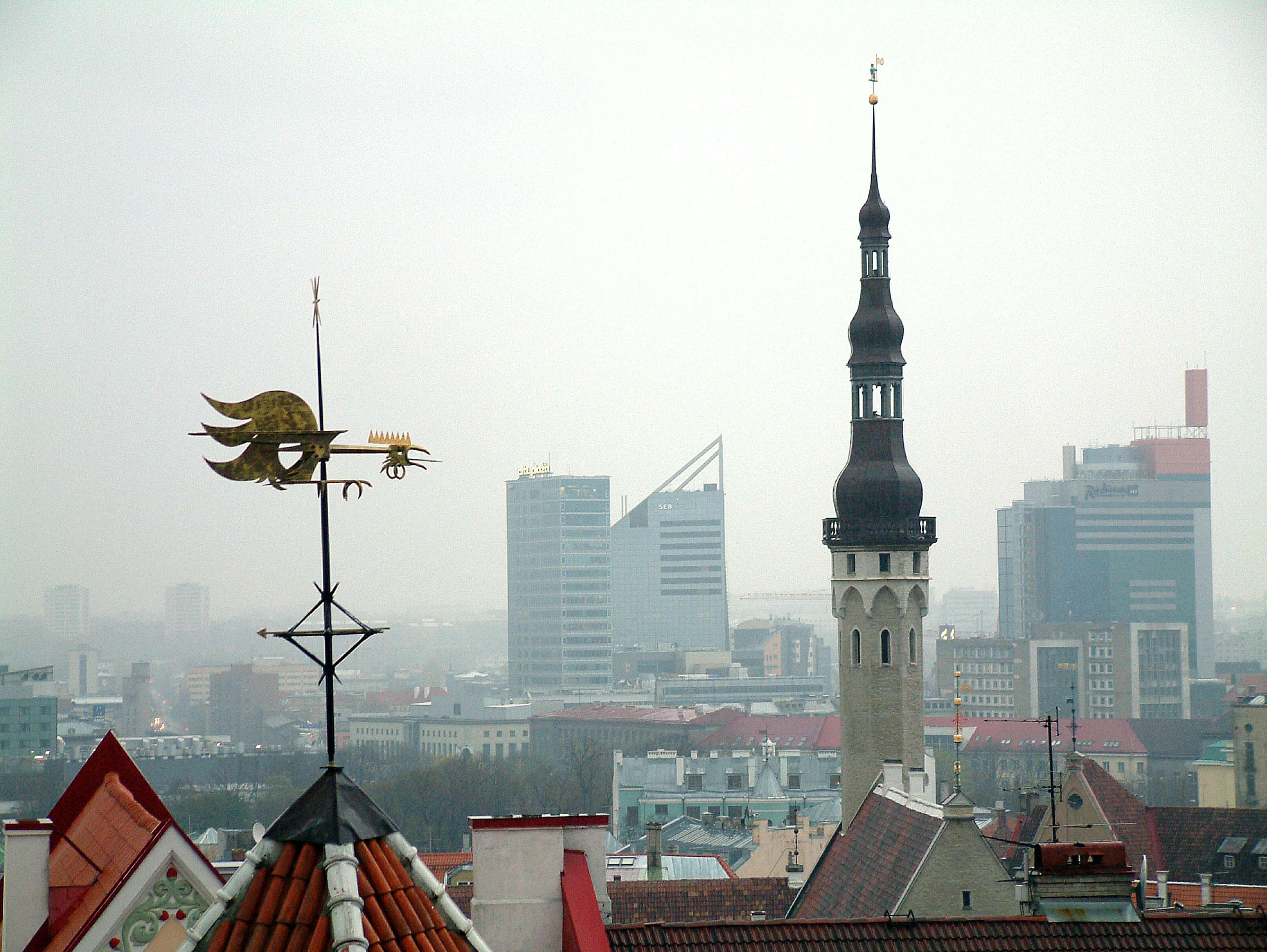 Русские в Эстонии: депутат в ЕП признала проблему притеснения россиян