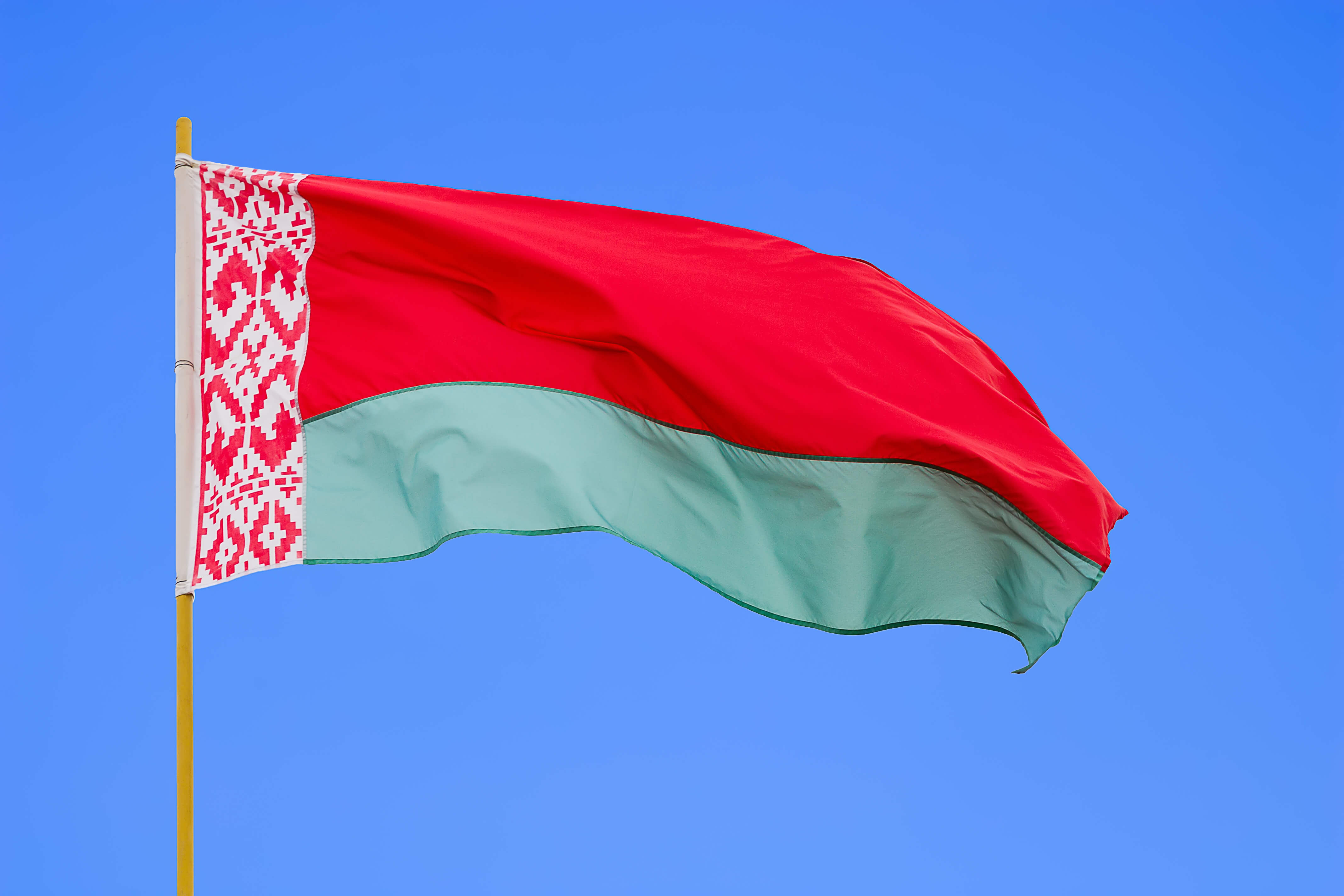 Правозащитники сообщили о задержании на протестах в Беларуси около 250 человек