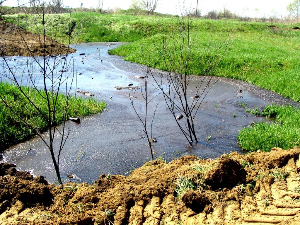 Земельные покровы страны могут восстановить за три месяца thumbnail