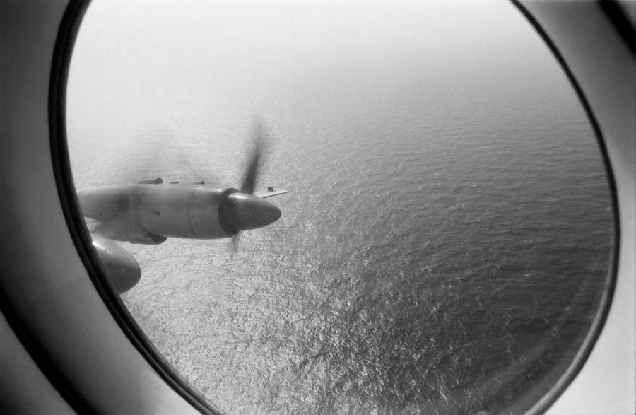 Flight over the sea Victor Lisitsyn, Виктор Лисицын/Global Look Press